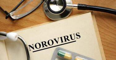 Norovirus - hoch ansteckende Infektionskrankheit