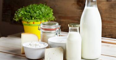 Milchprodukte - Laktoseintoleranz