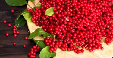 Die neuen Superfood-Beeren: Berberitzen und Schisandra-Beere
