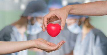 Organspende Transplantation Leben retten