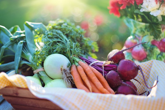 Bio-Ernährung