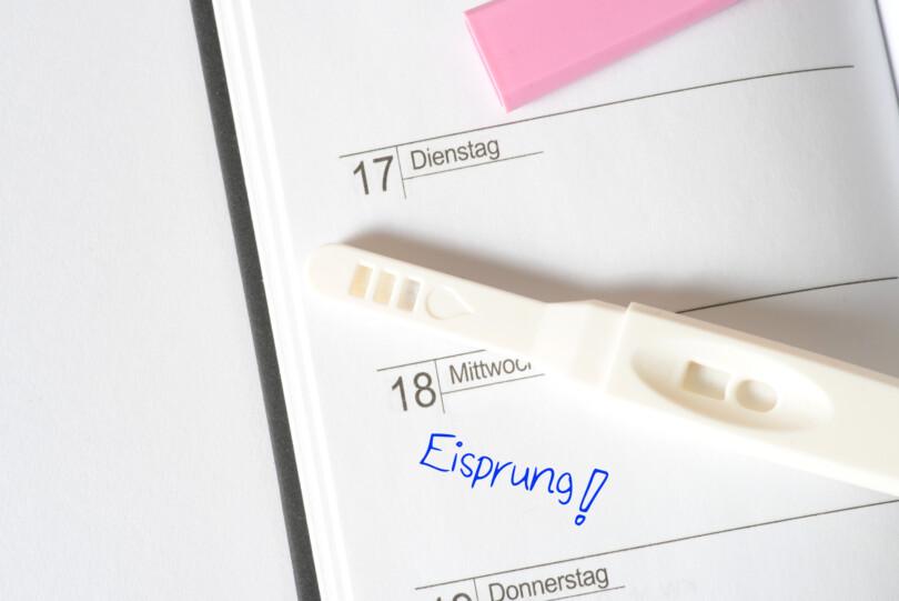Hilfsmittel um schwanger zu werden - NFP